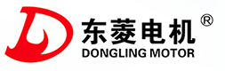 Wenling Dongling Motor Co.,Ltd.